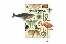 代官山 蔦屋書店にて『アニマリウム』監修 動物学者・今泉忠明先生に聞く、はじめての動物学