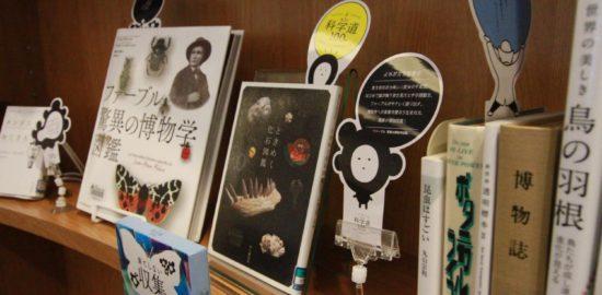 【2月11日〜】千代田区立日比谷図書文化館にてフェア開催中!