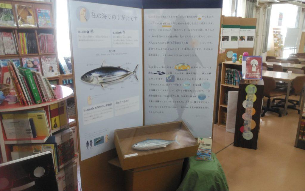 教室ミュージアム 海のめぐみをいただきます!展 掲示物