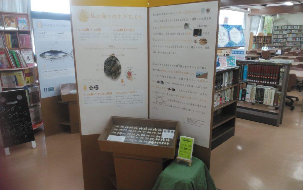 教室ミュージアム 海のめぐみをいただきます!展 展示物