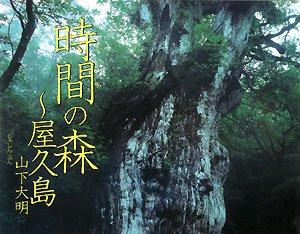 時間の森~屋久島